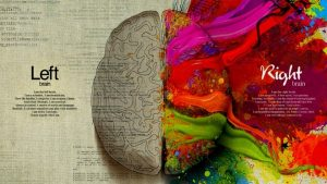 left-brain-right-brain image