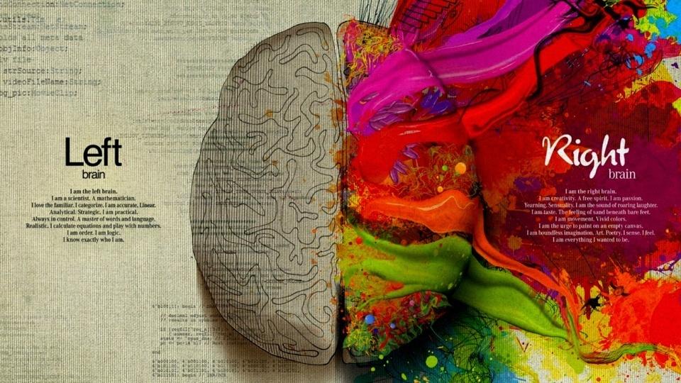 left/right brain graphic