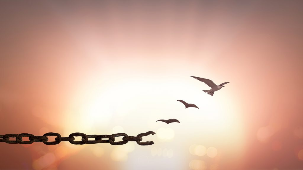 Forgive concept: Silhouette of bird flying and broken chains at sunset background